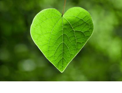 Living in Love Online Workshop
